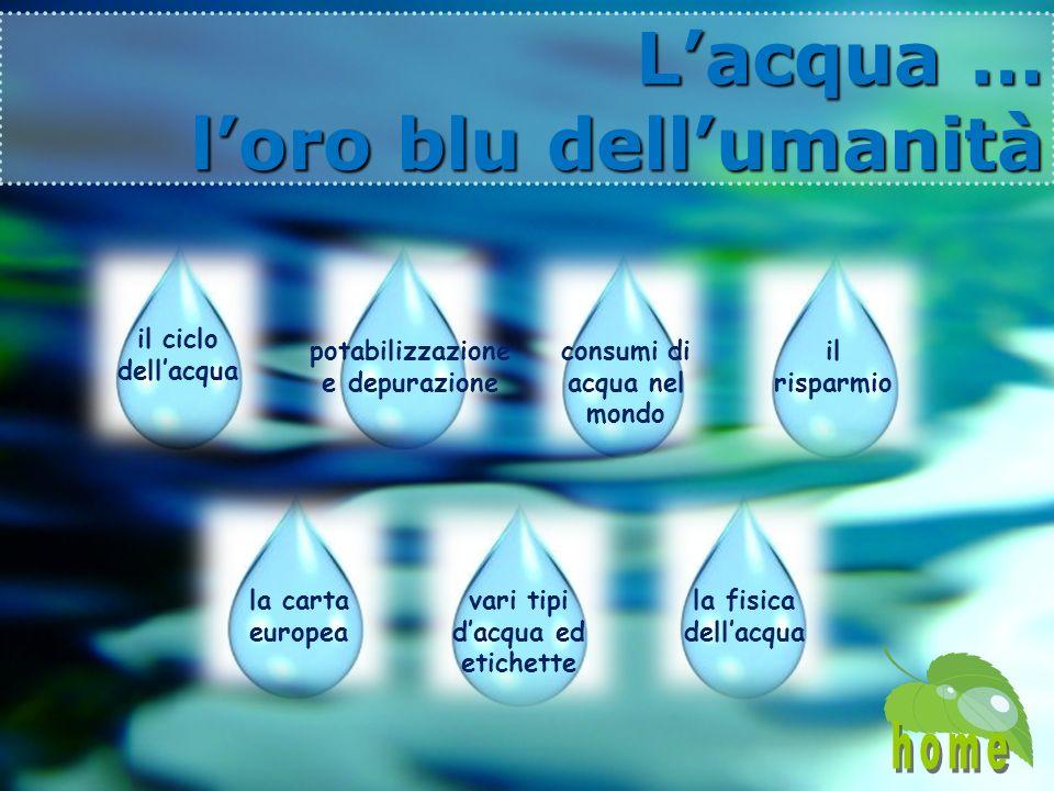 Lacqua … loro blu dellumanità Lacqua … loro blu dellumanità consumi di acqua nel mondo potabilizzazione e depurazione il risparmio vari tipi dacqua ed etichette il ciclo dellacqua la carta europea la fisica dellacqua