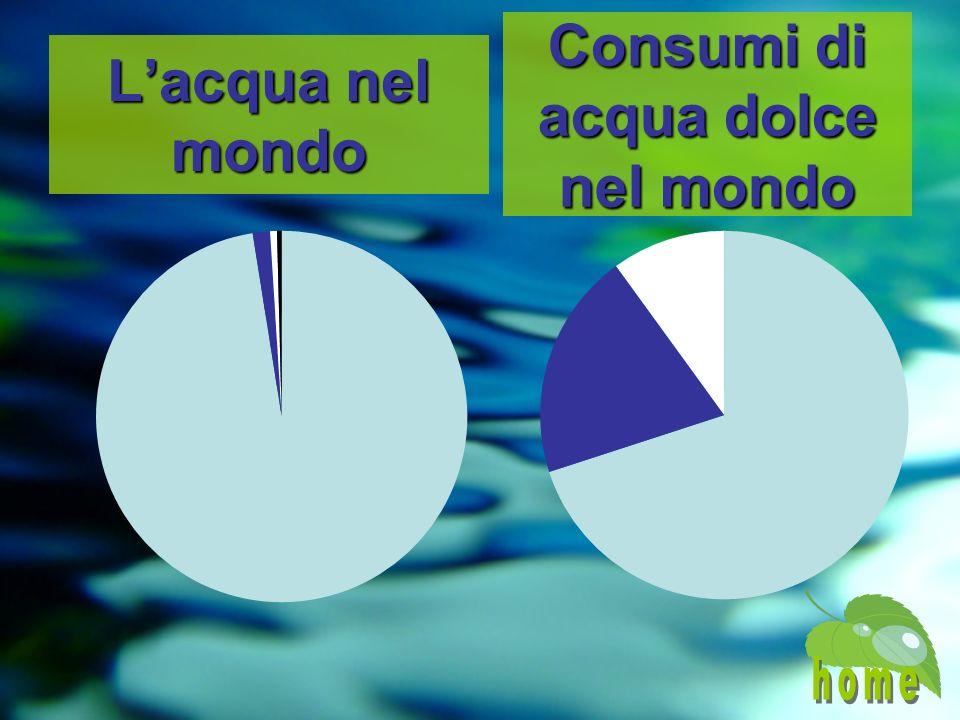 Lacqua nel mondo Consumi di acqua dolce nel mondo