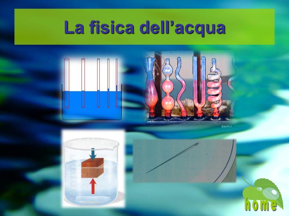 La fisica dellacqua