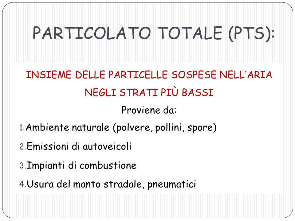 PARTICOLATO TOTALE (PTS): INSIEME DELLE PARTICELLE SOSPESE NELLARIA NEGLI STRATI PIÙ BASSI Proviene da: 1. Ambiente naturale (polvere, pollini, spore)