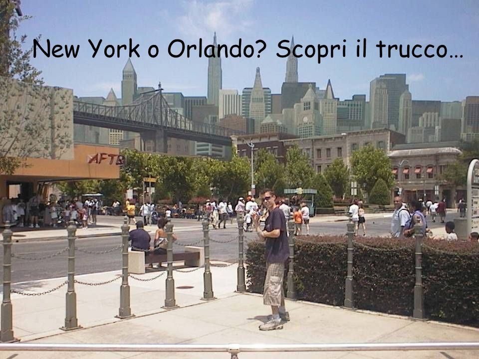 New York o Orlando Scopri il trucco…