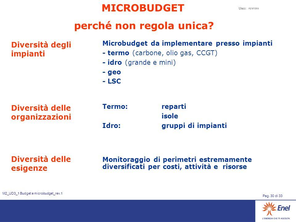 Uso: Aziendale Pag. 30 di 33 M2_UD3_1 Budget e microbudget_rev.1 perché non regola unica? Diversità degli impianti Microbudget da implementare presso