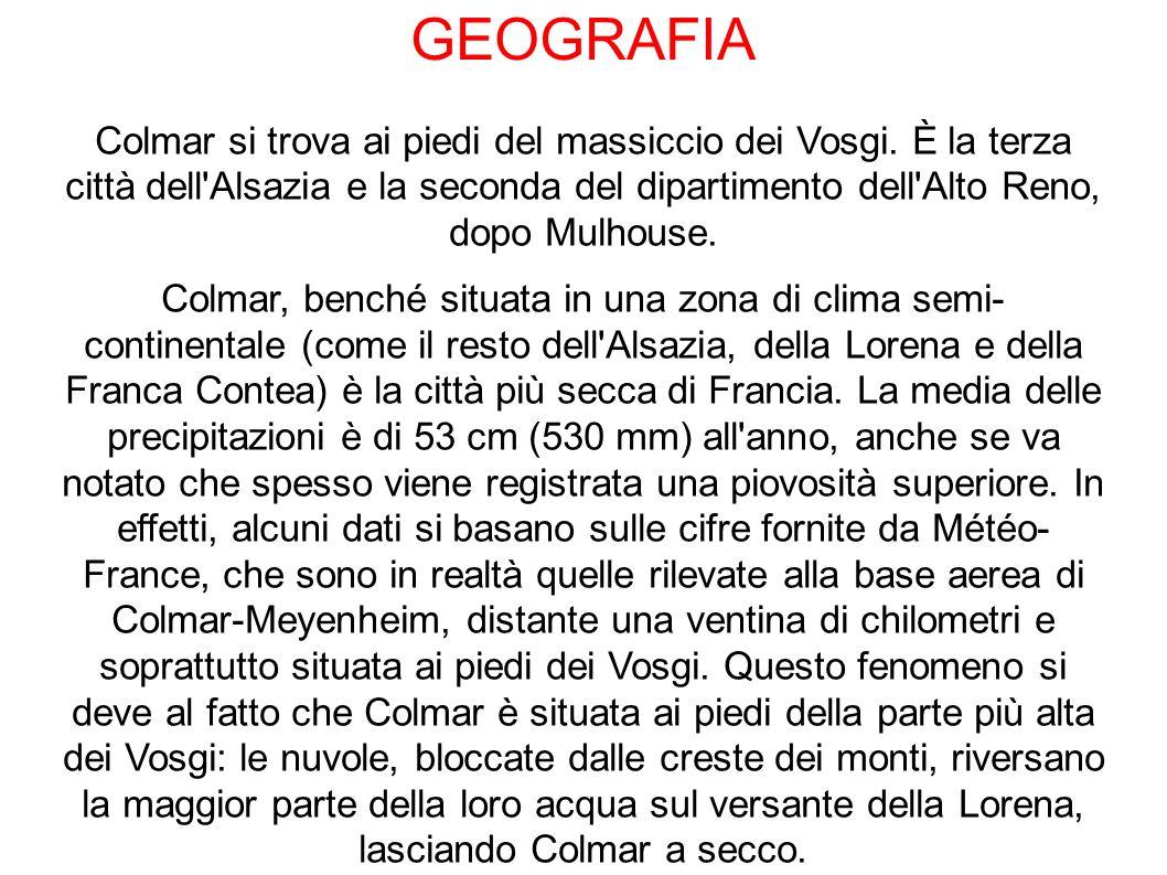 GEOGRAFIA Colmar si trova ai piedi del massiccio dei Vosgi.