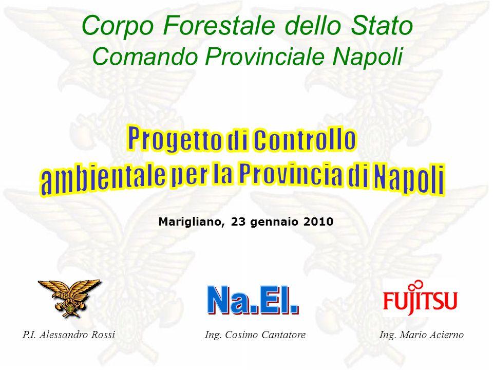 Marigliano, 23 gennaio 2010 Corpo Forestale dello Stato Comando Provinciale Napoli Ing.