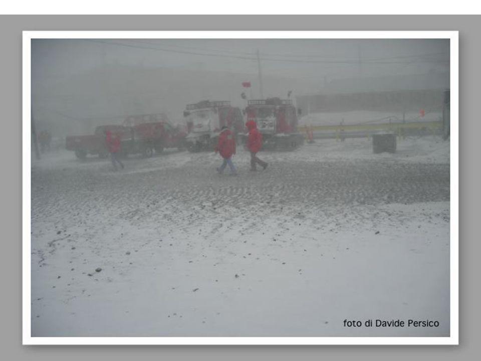 FREDDO E VENTOSO Le regioni polari sono le più fredde del pianeta.