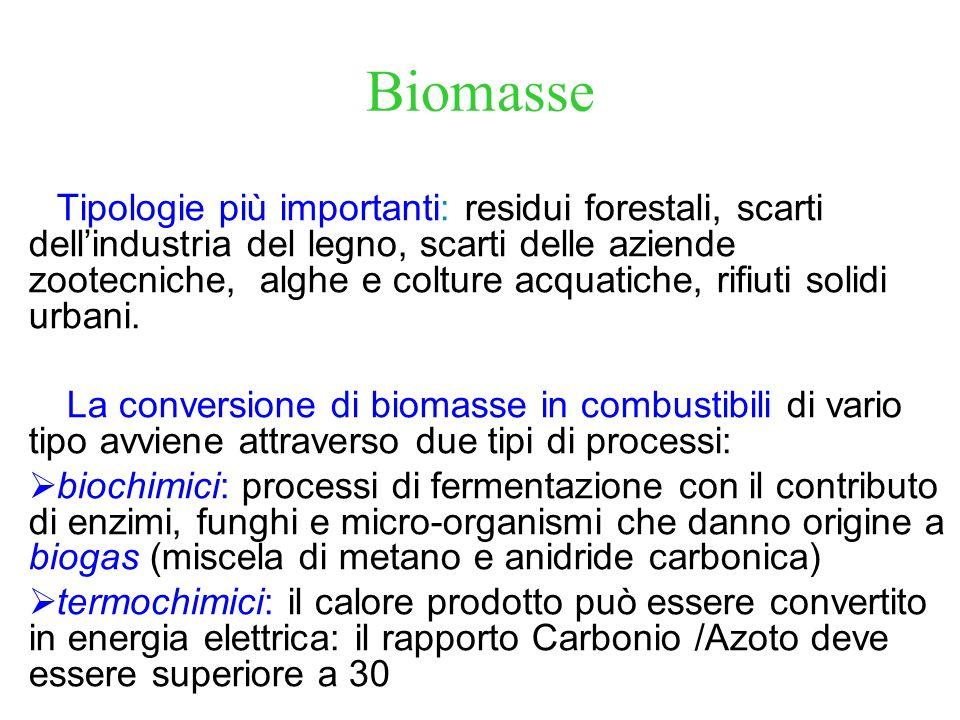 Biomasse Tipologie più importanti: residui forestali, scarti dellindustria del legno, scarti delle aziende zootecniche, alghe e colture acquatiche, ri