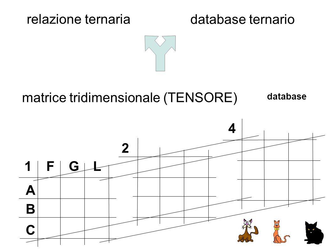 FGL A B C 1 2 4 relazione ternaria database ternario matrice tridimensionale (TENSORE) database