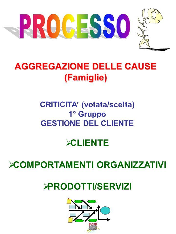AGGREGAZIONE DELLE CAUSE (Famiglie) CRITICITA (votata/scelta) 1° Gruppo GESTIONE DEL CLIENTE CLIENTE COMPORTAMENTI ORGANIZZATIVI PRODOTTI/SERVIZI