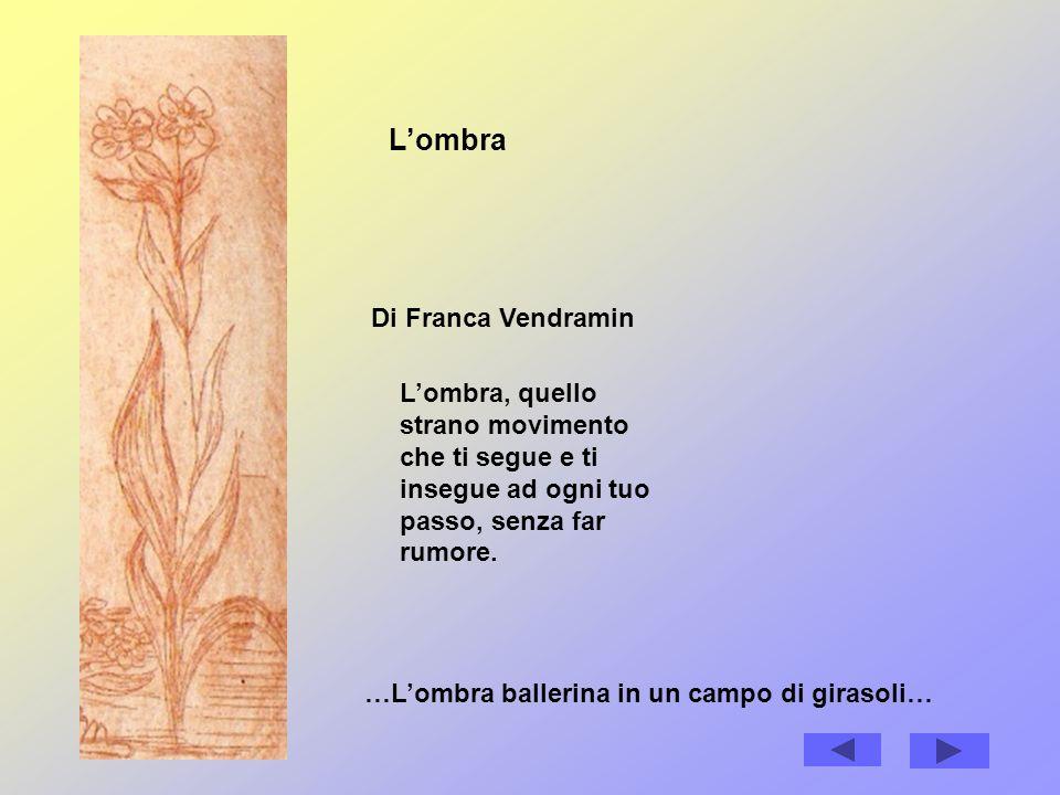 Lombra Di Franca Vendramin Lombra, quello strano movimento che ti segue e ti insegue ad ogni tuo passo, senza far rumore.