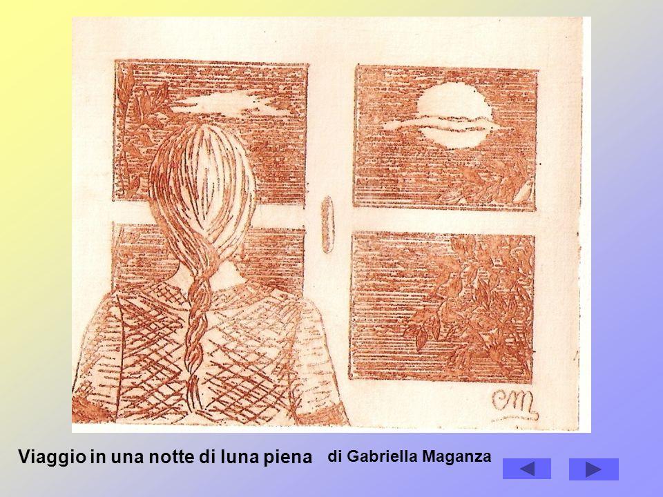 Viaggio in una notte di luna piena di Gabriella Maganza