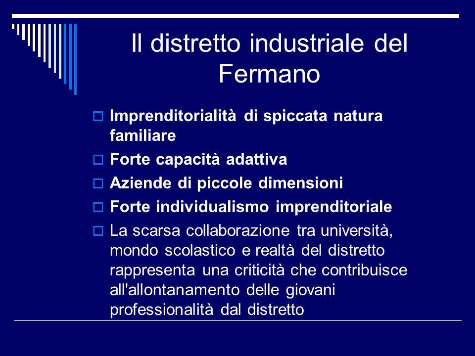 Il distretto industriale del Fermano Imprenditorialità di spiccata natura familiare Forte capacità adattiva Aziende di piccole dimensioni Forte indivi