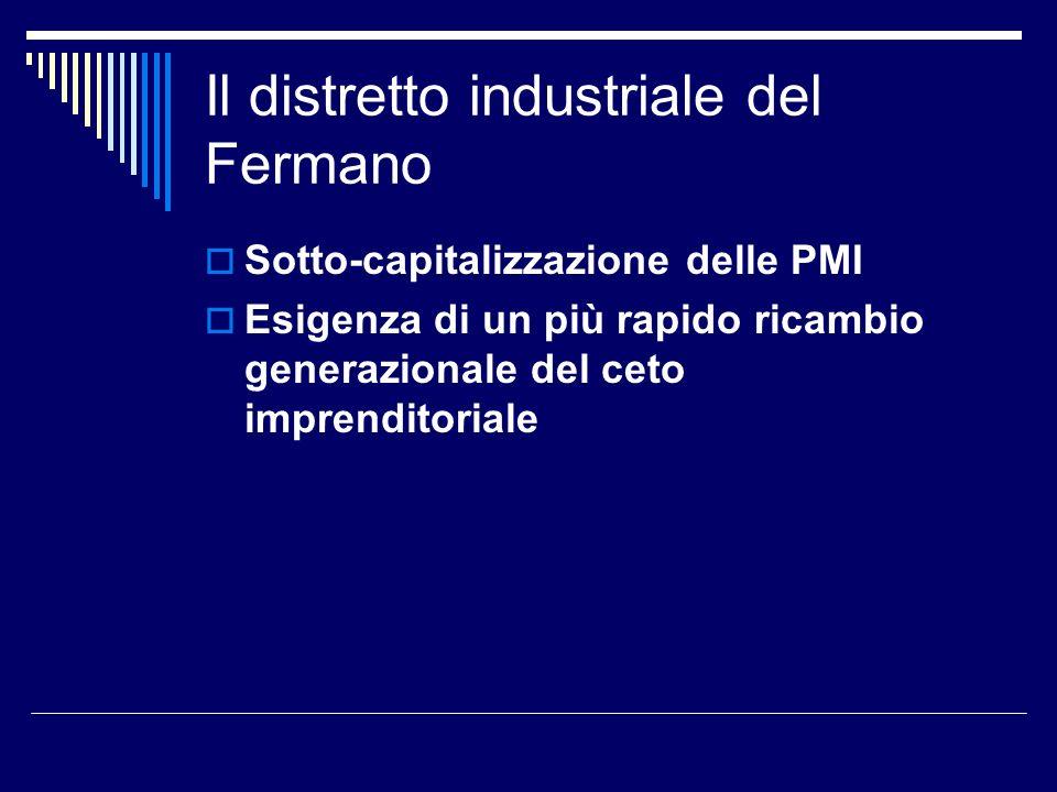 Il distretto industriale del Fermano Sotto-capitalizzazione delle PMI Esigenza di un più rapido ricambio generazionale del ceto imprenditoriale