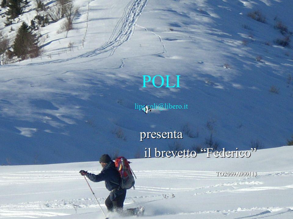POLI lipopoli@libero.it presenta il brevetto Federico il brevetto Federico TO2009A000113 TO2009A000113