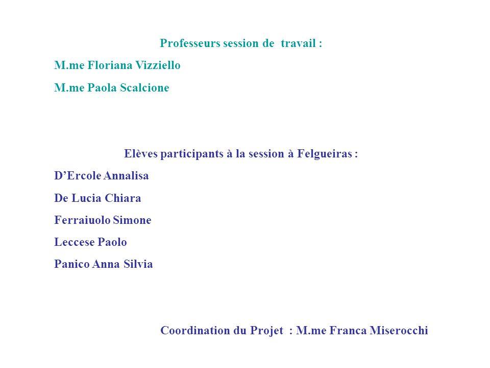 Professeurs session de travail : M.me Floriana Vizziello M.me Paola Scalcione Elèves participants à la session à Felgueiras : DErcole Annalisa De Luci