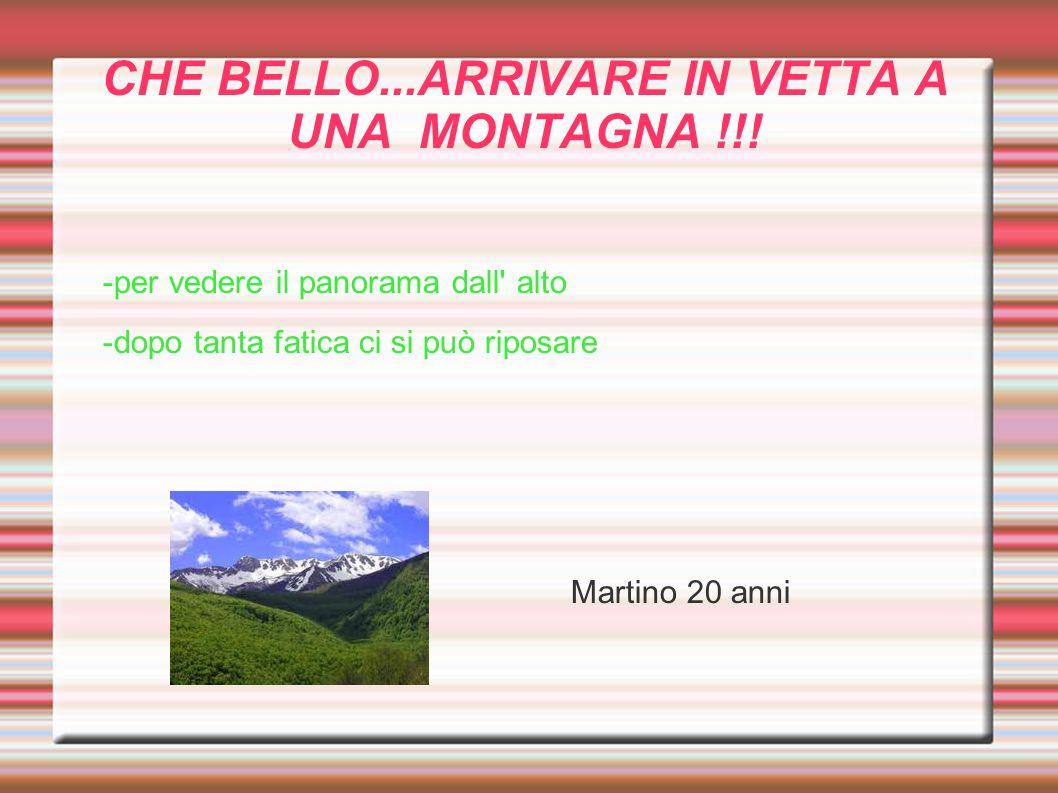 CHE BELLO...ARRIVARE IN VETTA A UNA MONTAGNA !!! -per vedere il panorama dall' alto -dopo tanta fatica ci si può riposare Martino 20 anni