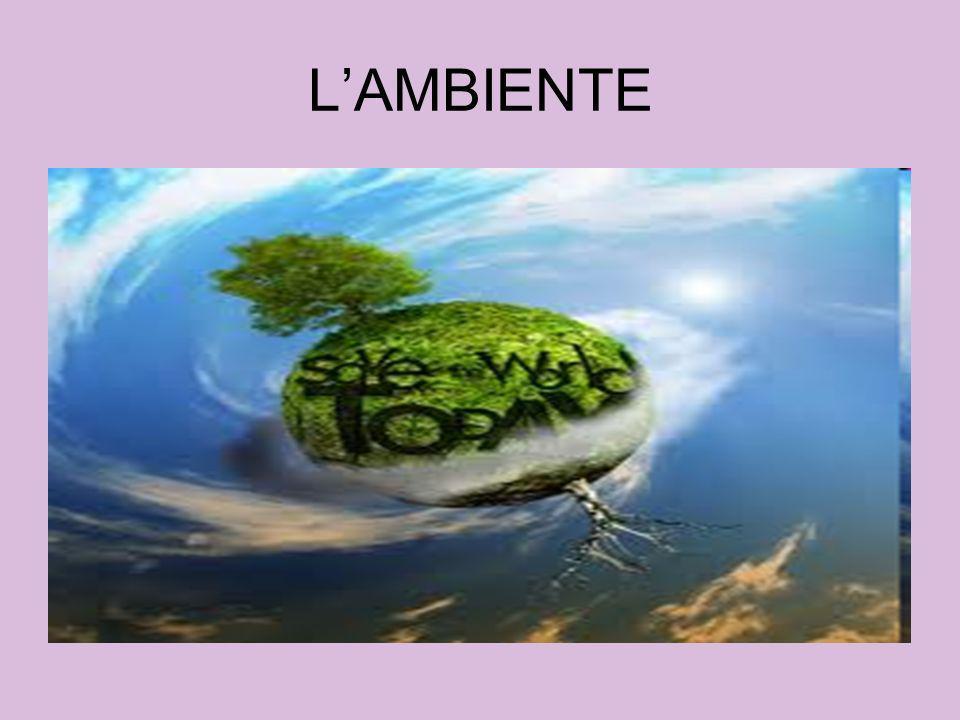 LAMBIENTE