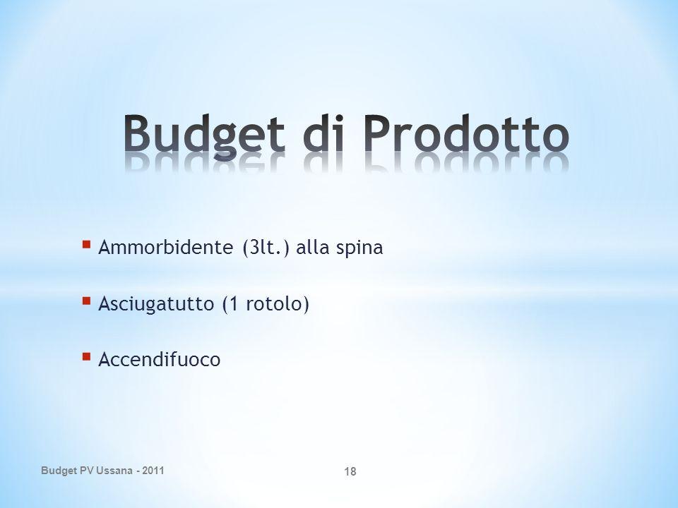 Ammorbidente (3lt.) alla spina Asciugatutto (1 rotolo) Accendifuoco Budget PV Ussana - 2011 18