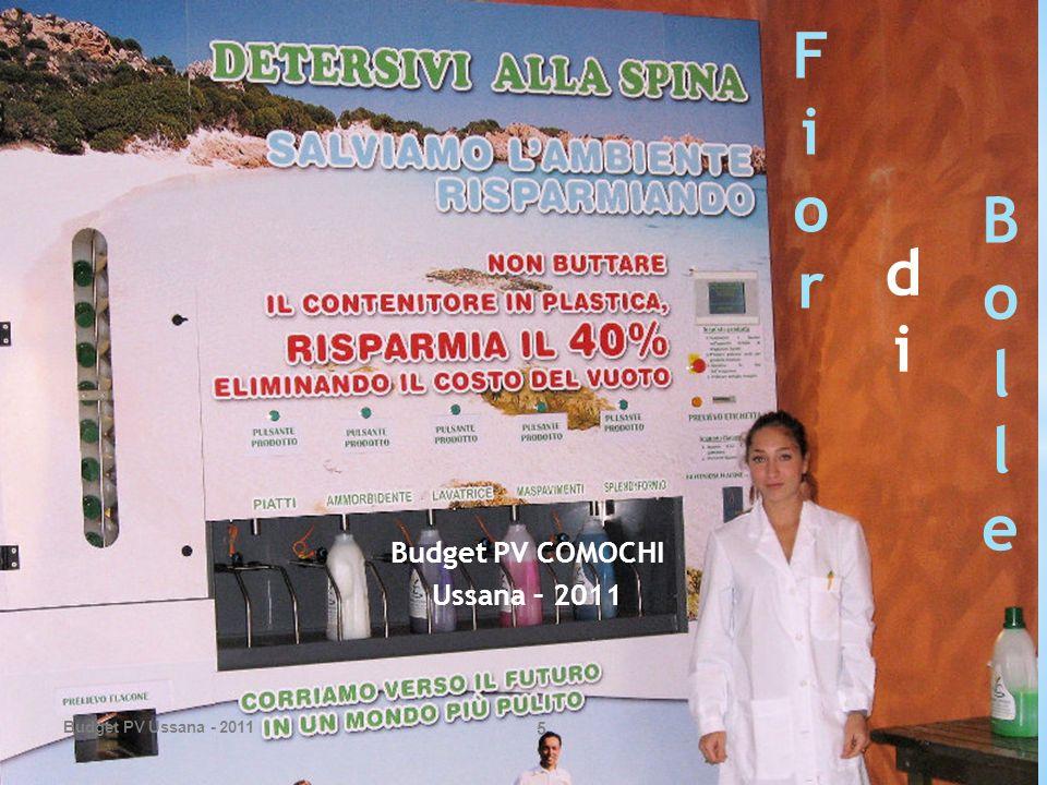 Budget PV COMOCHI Ussana – 2011 Budget PV Ussana - 2011 5 FiorFior didi BolleBolle