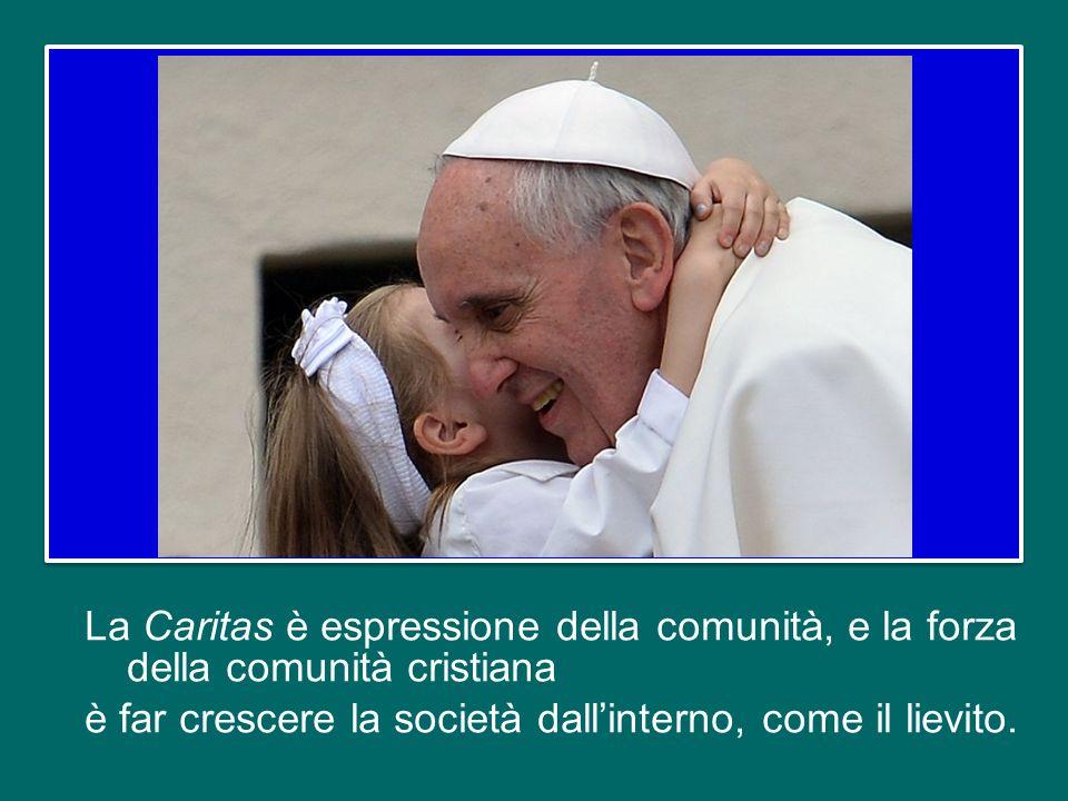 Alcuni membri della comunità cristiana sono chiamati ad impegnarsi in questo campo della politica, che è una forma alta di carità, come diceva Paolo VI.