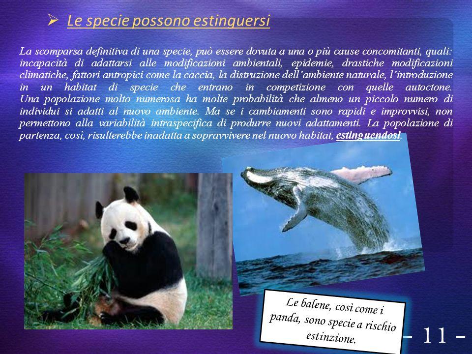 - 11 - Le balene, così come i panda, sono specie a rischio estinzione.