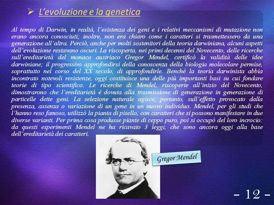 - 12 - Gregor Mendel