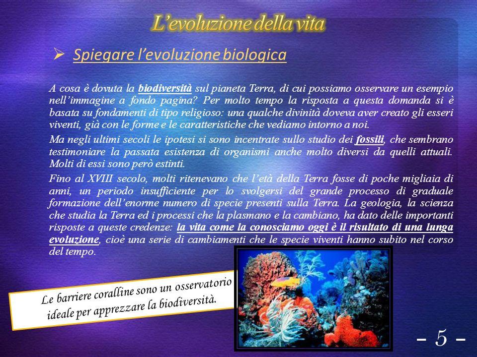 - 5 - Spiegare levoluzione biologica A cosa è dovuta la biodiversità sul pianeta Terra, di cui possiamo osservare un esempio nellimmagine a fondo pagi