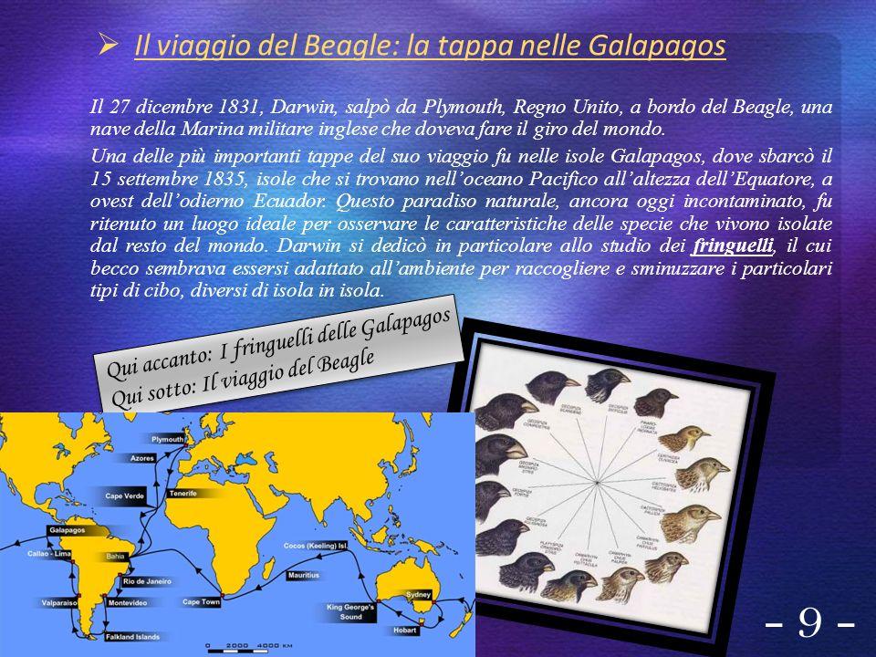 Il viaggio del Beagle: la tappa nelle Galapagos Il 27 dicembre 1831, Darwin, salpò da Plymouth, Regno Unito, a bordo del Beagle, una nave della Marina