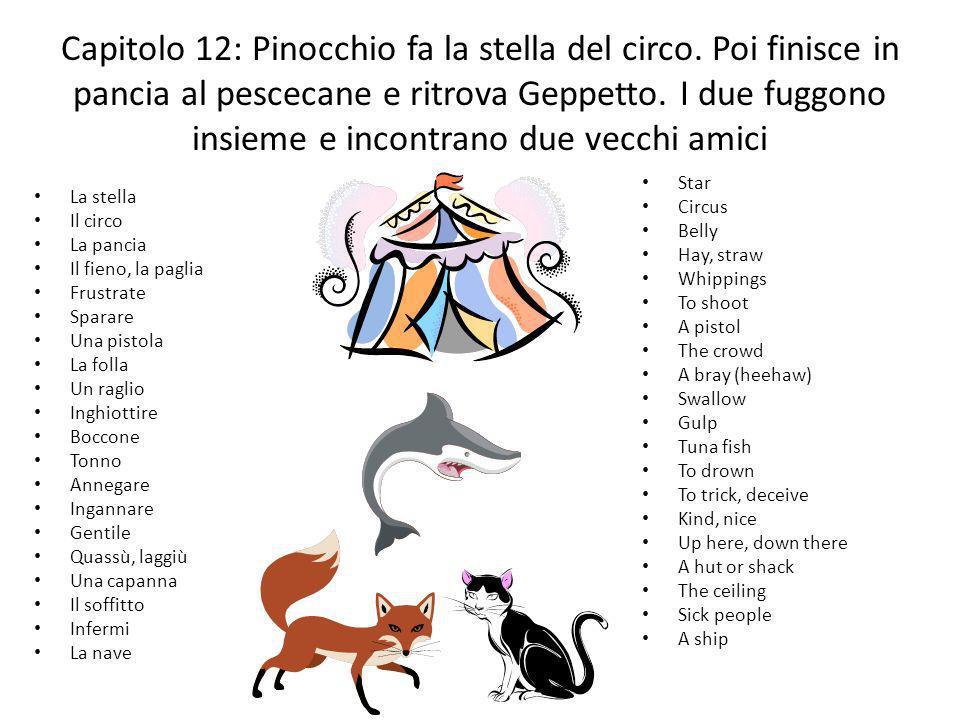 Capitolo 12: Pinocchio fa la stella del circo. Poi finisce in pancia al pescecane e ritrova Geppetto. I due fuggono insieme e incontrano due vecchi am