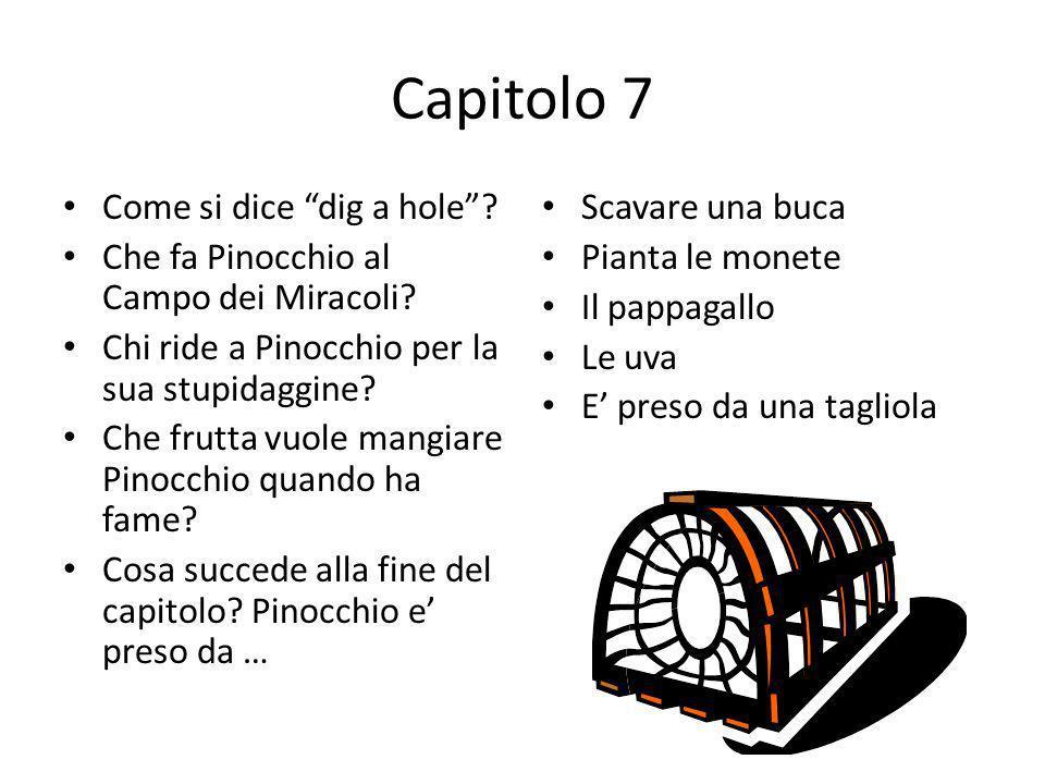 Capitolo 7 Come si dice dig a hole? Che fa Pinocchio al Campo dei Miracoli? Chi ride a Pinocchio per la sua stupidaggine? Che frutta vuole mangiare Pi