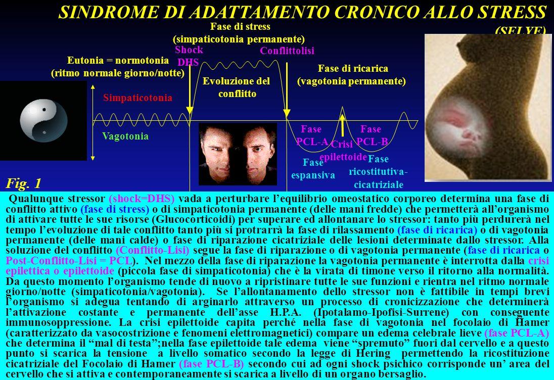 Eutonia = normotonia (ritmo normale giorno/notte) Fase di stress (simpaticotonia permanente) Fase di ricarica (vagotonia permanente) Shock DHS Conflit