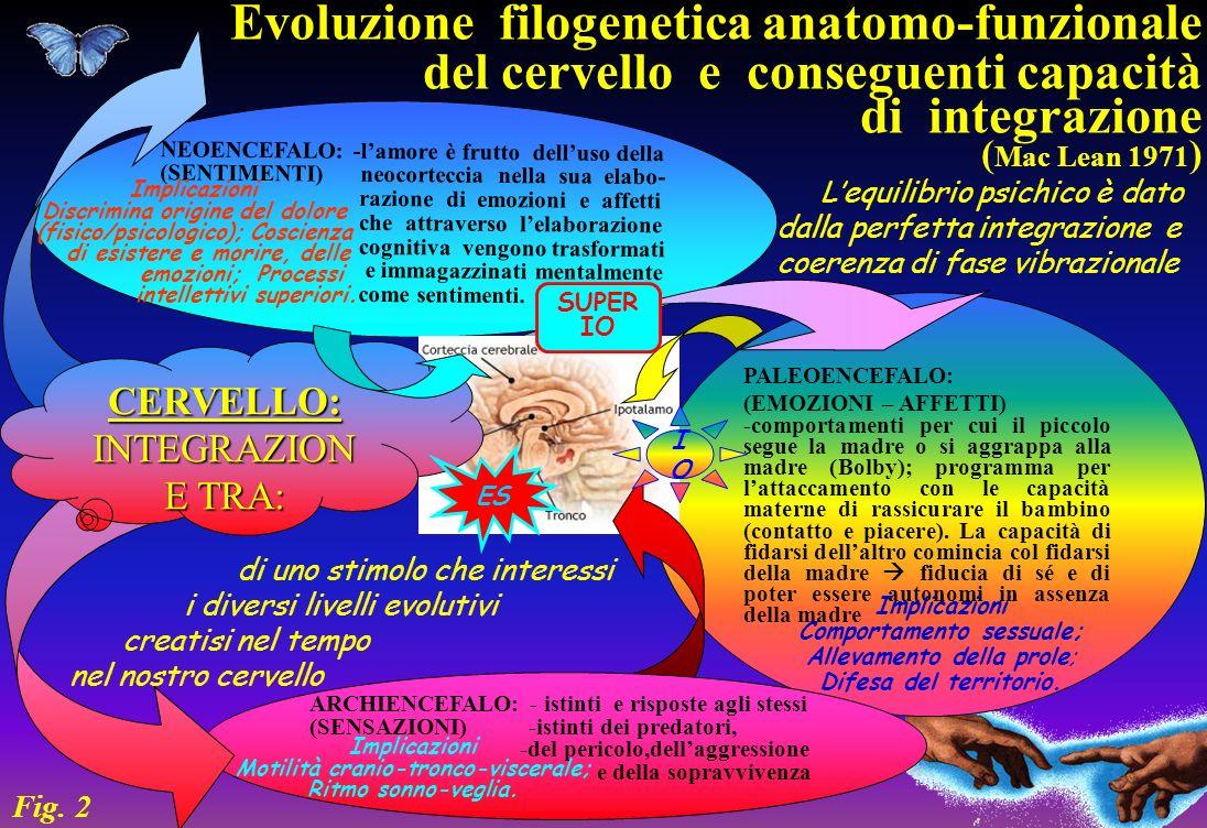 NEOENCEFALO: -lamore è frutto delluso della (SENTIMENTI) neocorteccia nella sua elabo- razione di emozioni e affetti che attraverso lelaborazione cogn