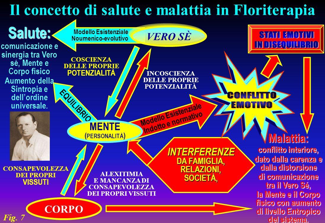 Modello Esistenziale Noumenico-evolutivo Modello Esistenziale Indotto e normativo EQUILIBRIO Il concetto di salute e malattia in Floriterapia MENTE (