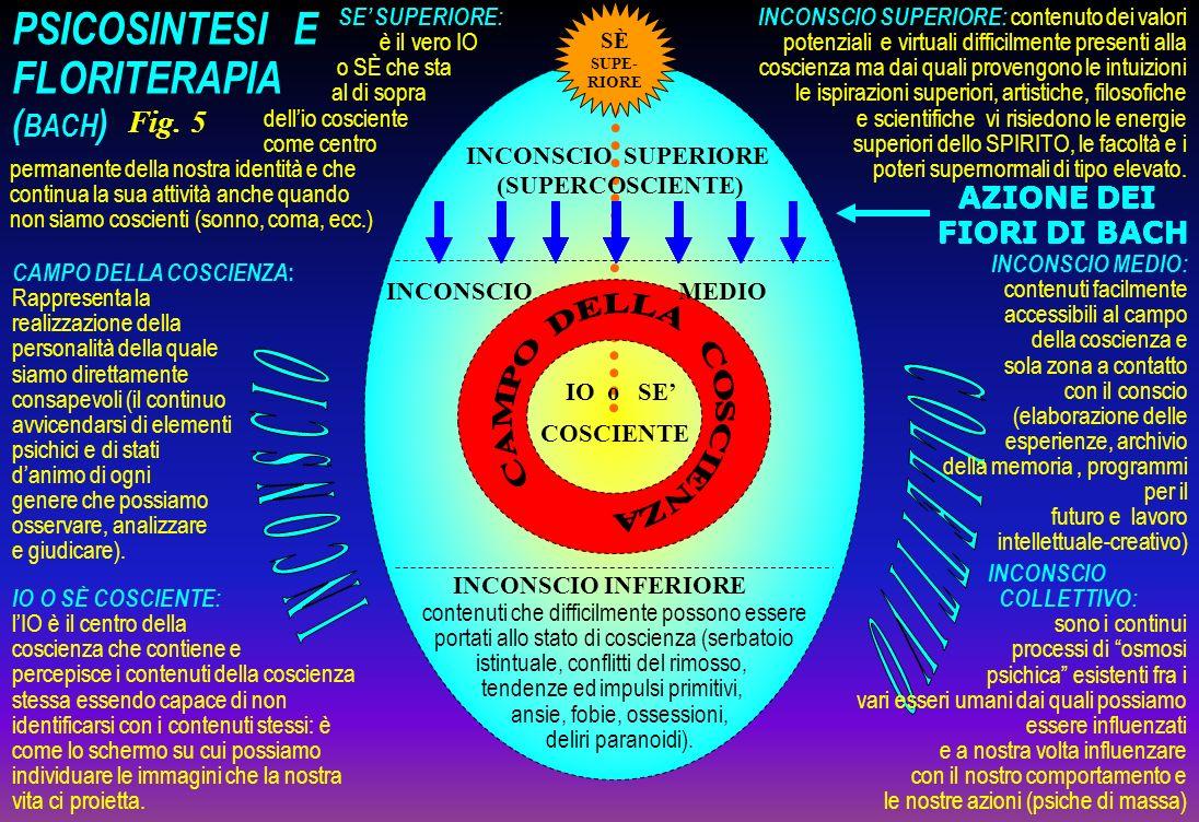 SE SUPERIORE: è il vero IO o SÈ che sta al di sopra dellio cosciente come centro permanente della nostra identità e che continua la sua attività anche