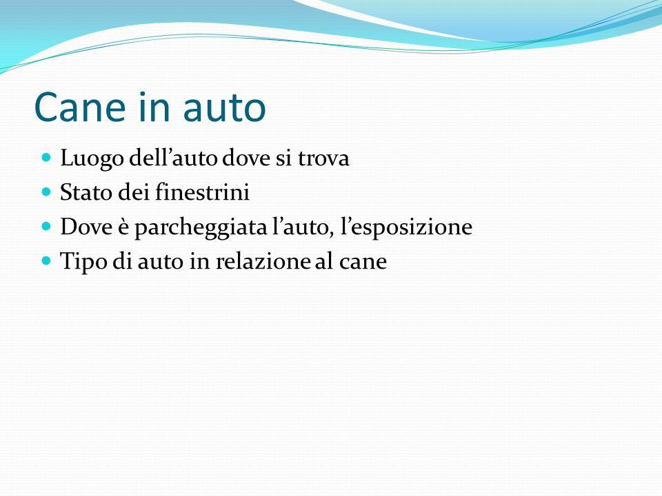 Cane in auto Luogo dellauto dove si trova Stato dei finestrini Dove è parcheggiata lauto, lesposizione Tipo di auto in relazione al cane