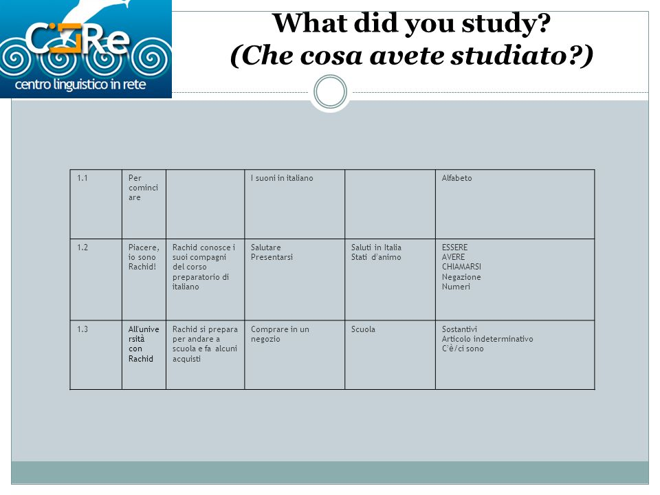 What did you study.