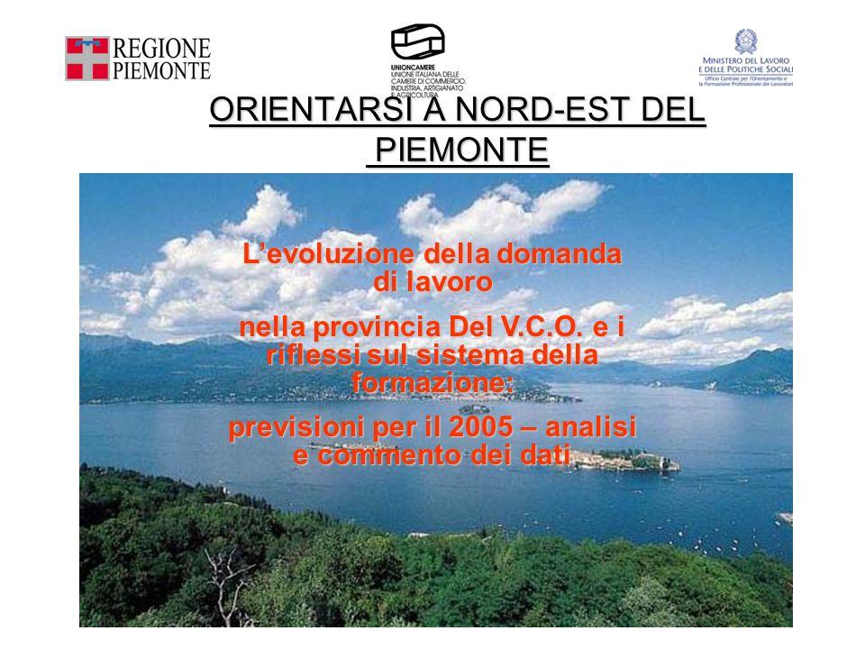 Levoluzione della domanda di lavoro nella provincia Del V.C.O. e i riflessi sul sistema della formazione: previsioni per il 2005 – analisi e commento