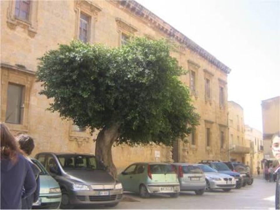 La Via Girolamo Sansone immette nella Via Ospedale. Il toponimo dovrebbe riferirsi al sindaco della città negli anni 1821-1824.