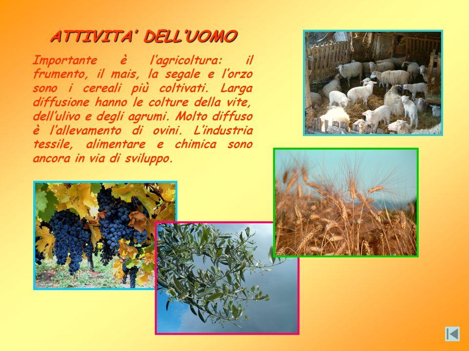 IL CLIMA LAlbania ha un clima tipicamente mediterraneo sulle regioni costiere, con inverni miti e umidi ed estati calde e secche. Allinterno il clima