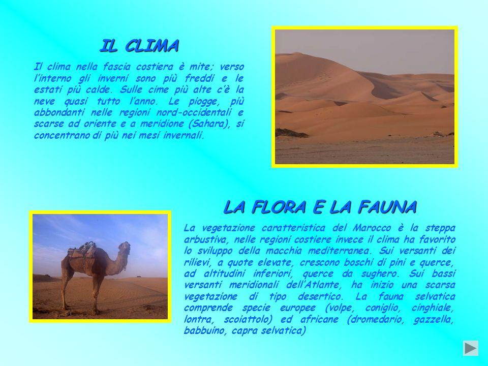 Due nostri compagni sono nati in Marocco: insieme a loro abbiamo elaborato questo testo sulla splendida terra africana. INTRODUZIONE Il Marocco è uno