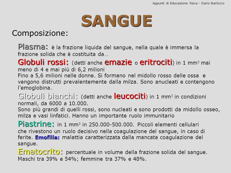 Appunti di Educazione fisica - Dario Barlocco Gruppi sanguigni La conoscenza dei gruppi sanguigni è di fondamentale importanza per le trasfusioni.