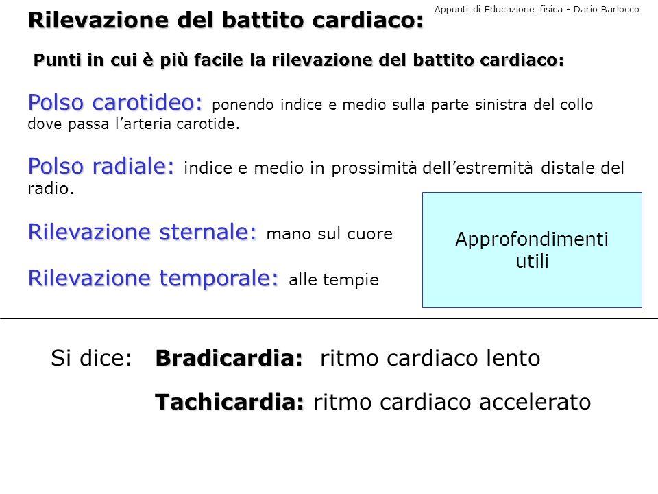 Appunti di Educazione fisica - Dario Barlocco IL POLSO Sentire il polso Significa percepire i battiti cardiaci trasmessi in periferia ad unarteria posta in superficie.