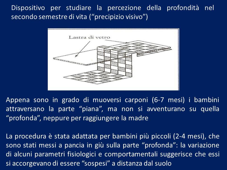 Dispositivo per studiare la percezione della profondità nel secondo semestre di vita (precipizio visivo) Appena sono in grado di muoversi carponi (6-7