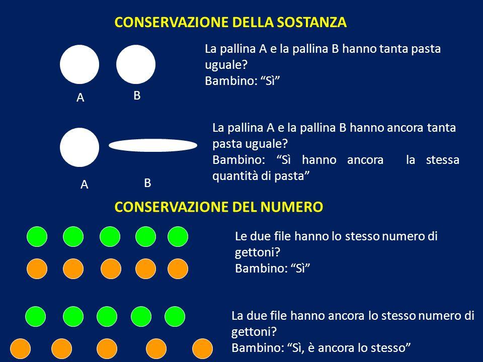 CONSERVAZIONE DELLA SOSTANZA La pallina A e la pallina B hanno tanta pasta uguale? Bambino: Sì A B La pallina A e la pallina B hanno ancora tanta past