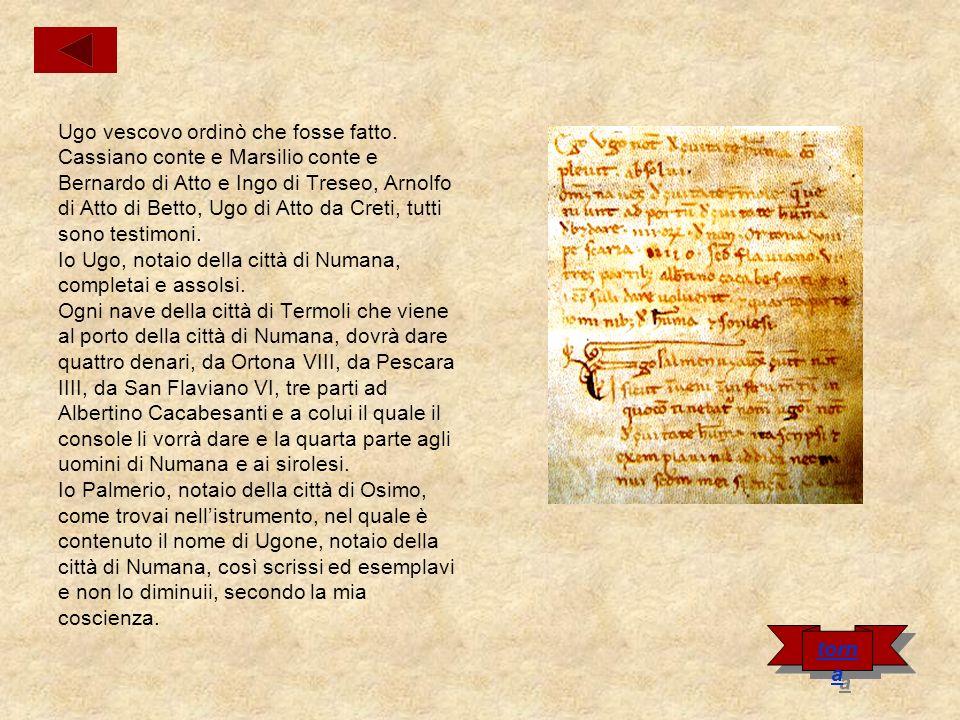 Carta di Rainaldo Infante Nel nome di Dio.