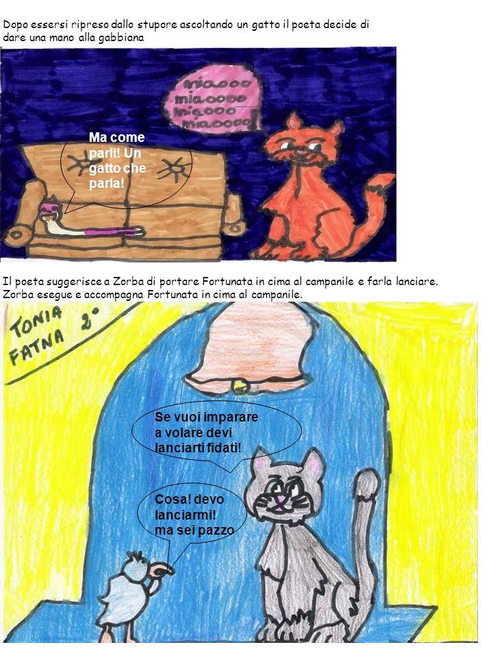 Dopo essersi ripreso dallo stupore ascoltando un gatto il poeta decide di dare una mano alla gabbiana Il poeta suggerisce a Zorba di portare Fortunata