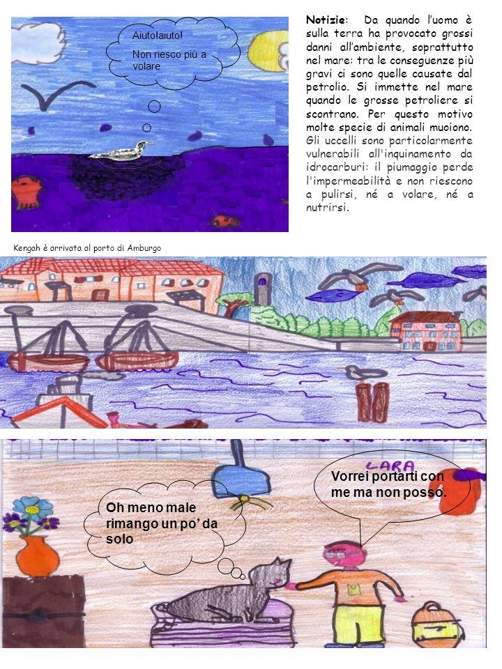 Notizie: Da quando luomo è sulla terra ha provocato grossi danni allambiente, soprattutto nel mare: tra le conseguenze più gravi ci sono quelle causat