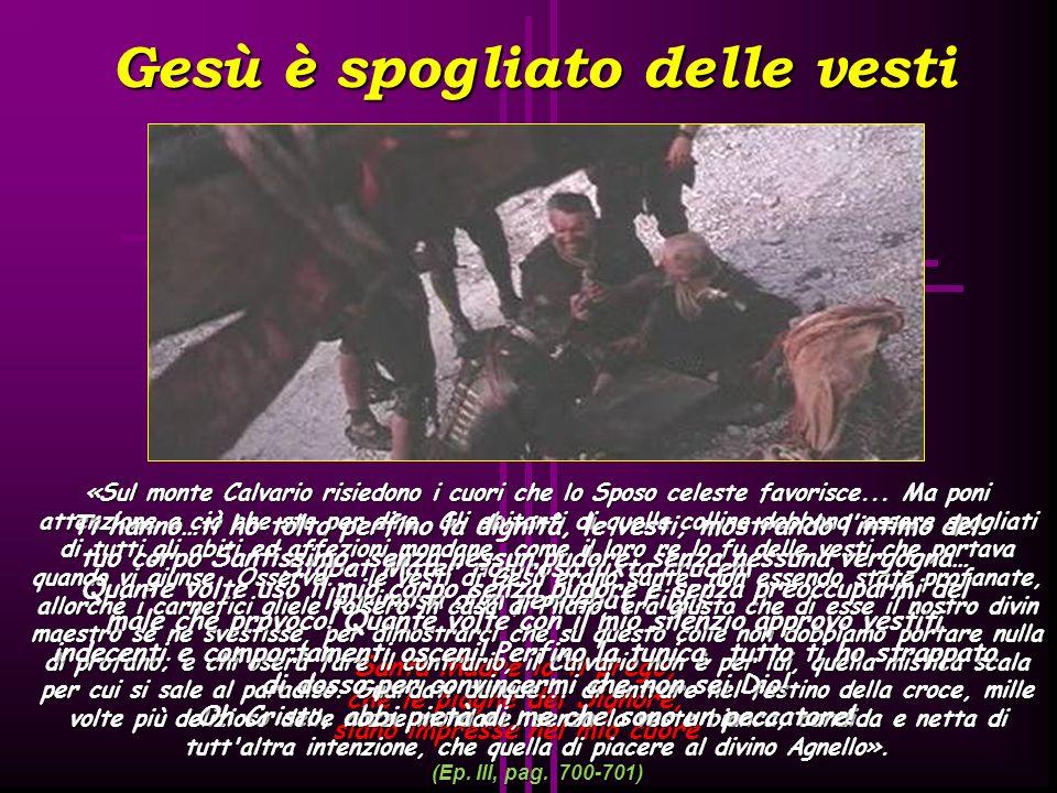 Gesù cade per la terza volta Stabat Mater dolorosa iuxta crucem lacrimosa dum pendebat Filius Santa Madre io ti prego, che le piaghe del Signore, sian