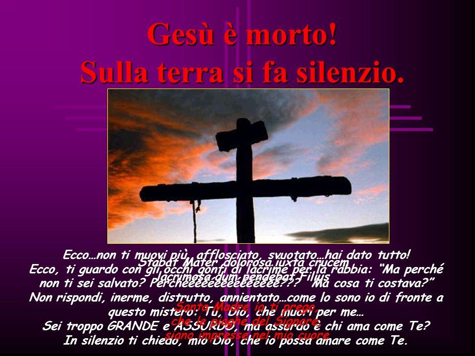 Gesù muore sulla croce «Gli occhi semichiusi e quasi spenti, la bocca semiaperta, il petto, prima ansante, ora affievolito quasi del tutto ha cessato