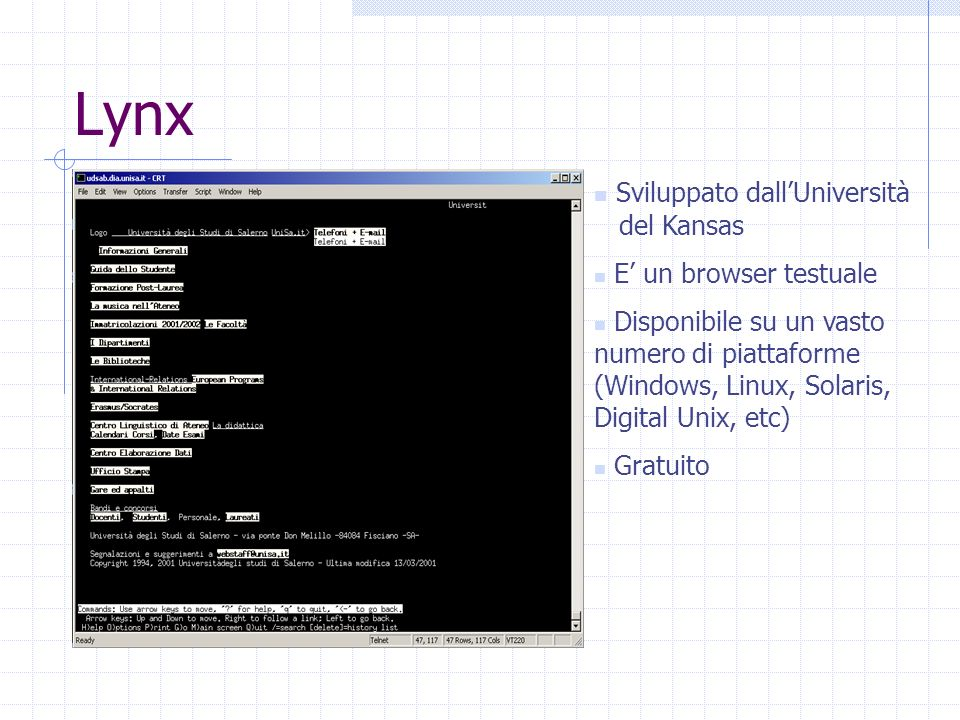 Lynx Sviluppato dallUniversità del Kansas E un browser testuale Disponibile su un vasto numero di piattaforme (Windows, Linux, Solaris, Digital Unix, etc) Gratuito