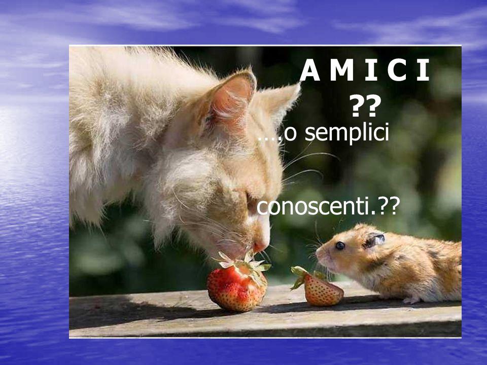 A M I C I ?? ….o semplici conoscenti.??